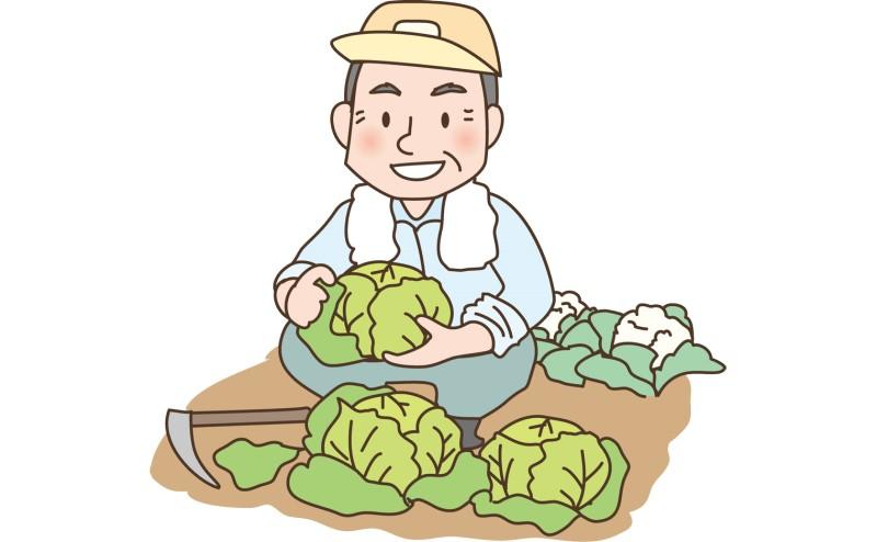 農業体験ができるサービス