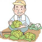 農業や陶芸を体験をしてみませんか?普段できないイベントが満載!TABICA(たびか)をおすすめします!
