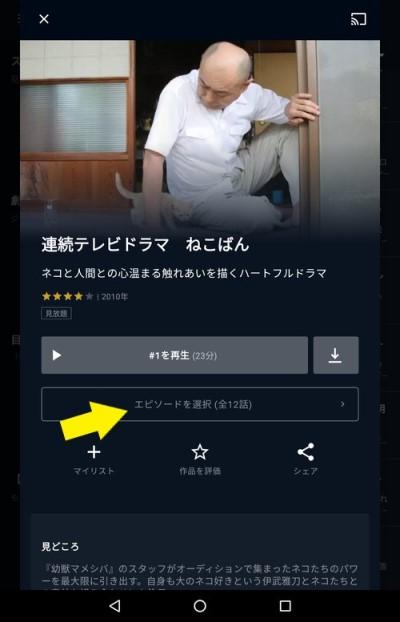 連続ドラマ作品の詳細画面