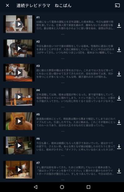 連続ドラマのエピソード一覧